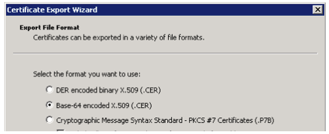 Screenshot from certificate export wizard