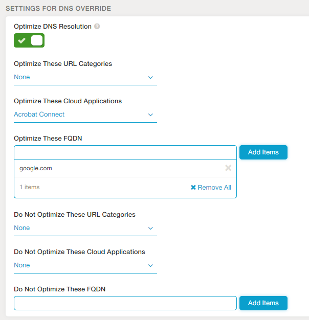 Screenshot showing the option for DNS optimization at the ZEN