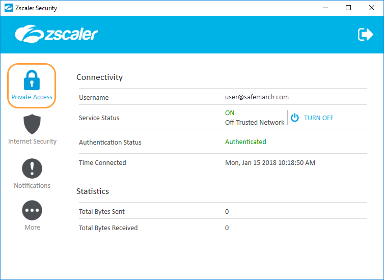 Viewing Information About Private Access on the Zscaler App (Windows
